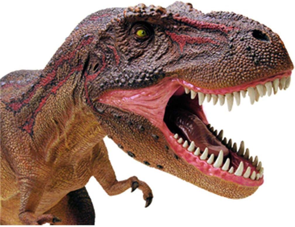 N5102 Juguete Educativo de arqueolog/ía Dinosaurios versi/ón en ingl/és Brainstorm