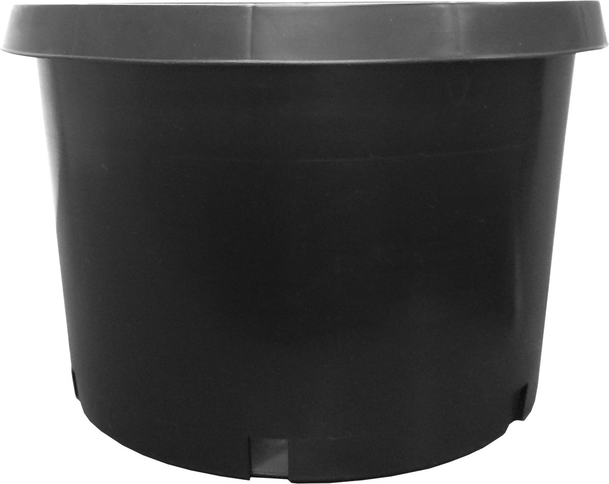 Nursery Supplies Premium Nursery Pot, Short, 10 gal by Nursery Supplies