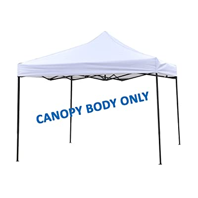 Home & Comfort 10' x 10' Canopy Frame: Sports & Outdoors