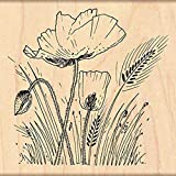 Penny Black Decorative Rubber Stamps, Field Of Poppies