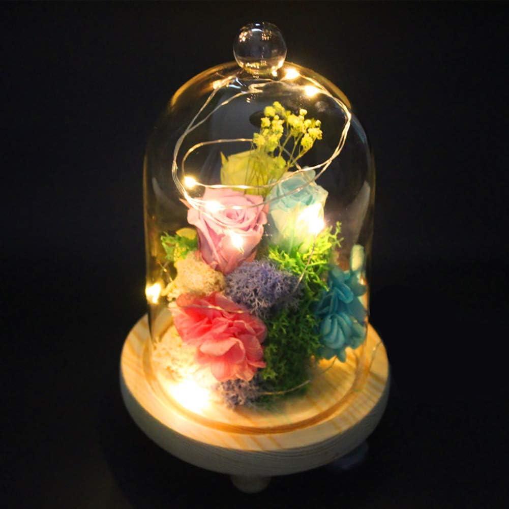 Boule 15cm Warmiehomy Cloche en Verre D/écorative avec Plancher en Bois