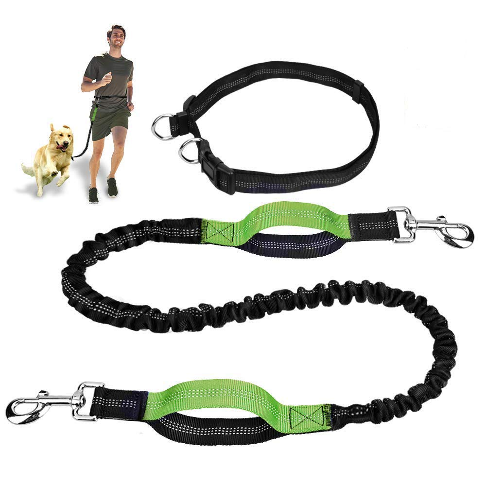 LEONEBEBE Heavy Duty Dog Leash with Bungee Traffic Handle Dog Leash Reflective Dog Leash with Double Padded Handles - Durable Dog Leash for Small Medium Large Dogs Training Walking 4ft (Black)