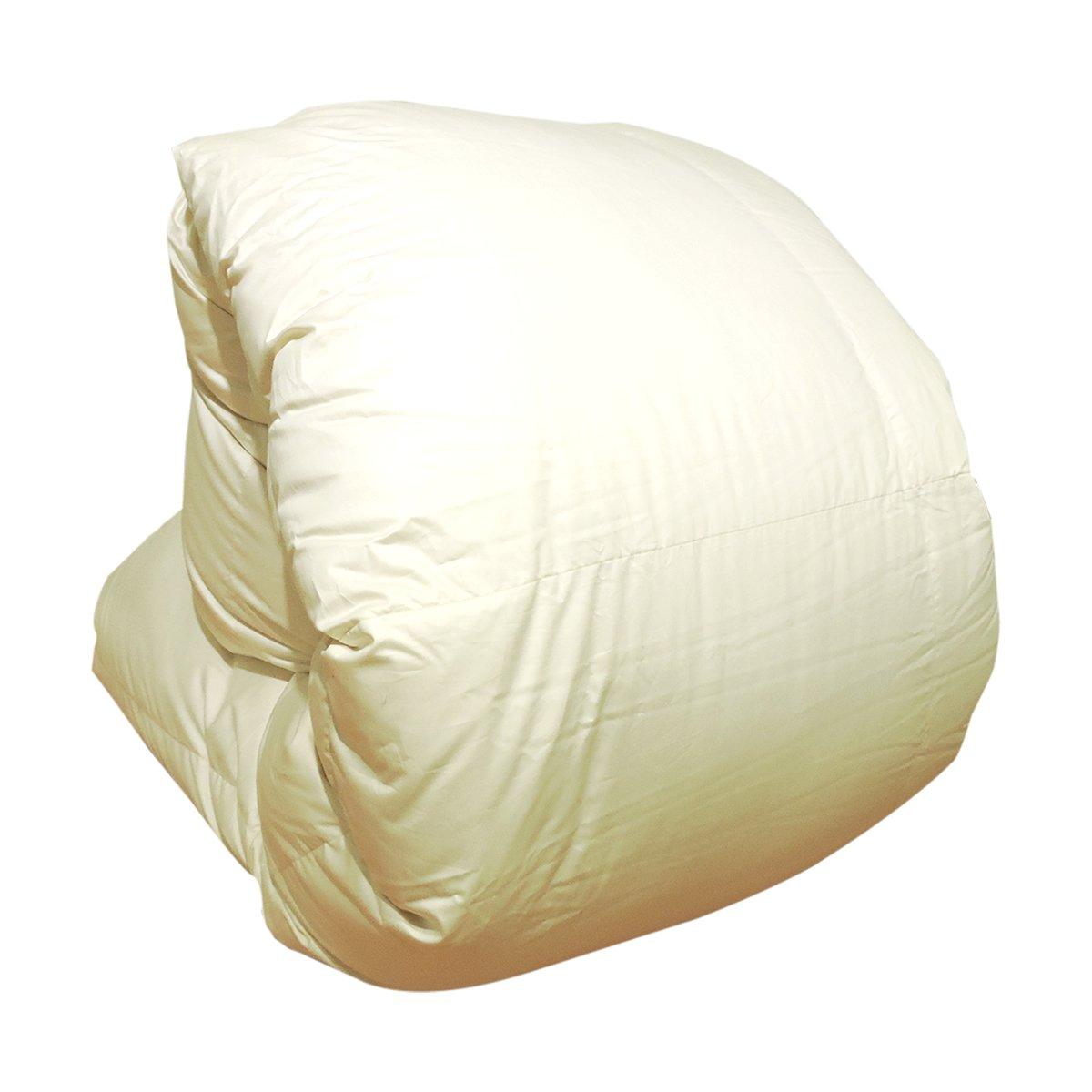 眠り姫 日本製 羽毛布団 ハンガリー産ホワイトマザーグースダウン 93% ダブルロング シャルレーヌ アイボリー 190×210cm 60サテン 超長綿 二層立体 400dp かさ高165mm以上 B016TEP3KW ダブルロング|アイボリー アイボリー ダブルロング