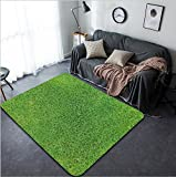 Vanfan Design Home Decorative Green grass Soccer football field stadium grass Modern Non-Slip Doormats Carpet for Living Dining Room Bedroom Hallway Office Easy Clean Footcloth