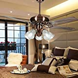 RainierLight Modern and Simple Ceiling Fan 5 Iron Blades 5 Light White Frosted Glass Lampshade for Indoor 52-Inch Mute Fan