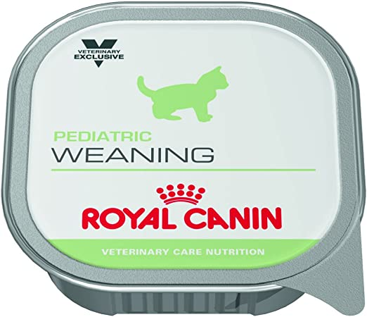Royal Canin Vcn Pediatric Weaning Cans Cat Food 195g X 12 Amazon Co Uk Pet Supplies