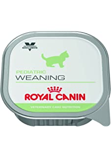 Pienso Húmedo Gato Weaning 12x195gr Royal Canin