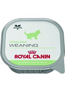Pienso Húmedo Gato Weaning 12x195gr Royal Canin