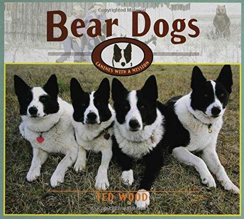 Bear Dogs: Canines with a - Bear Dog Karelian