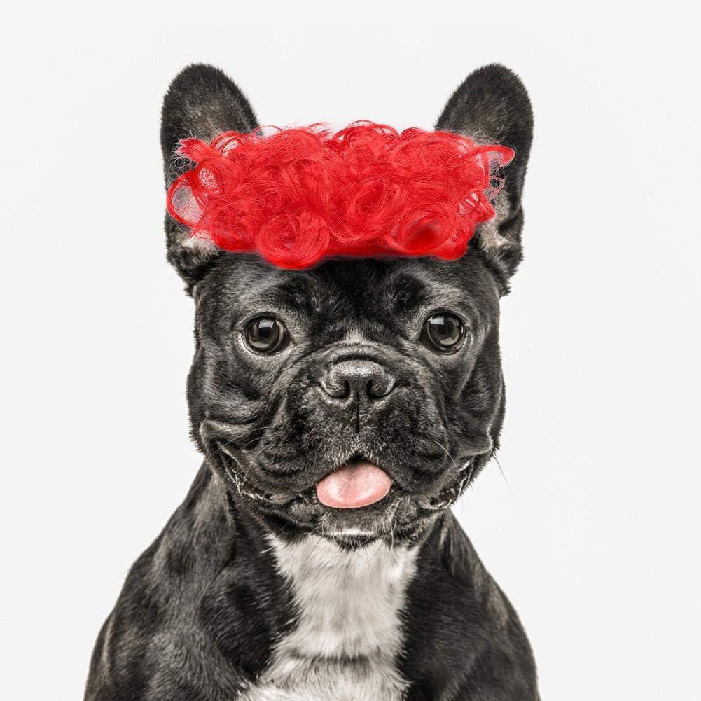 Pop Etpop Pet Dog Costumes Novelty Curl Wig Hat Pet Accessories