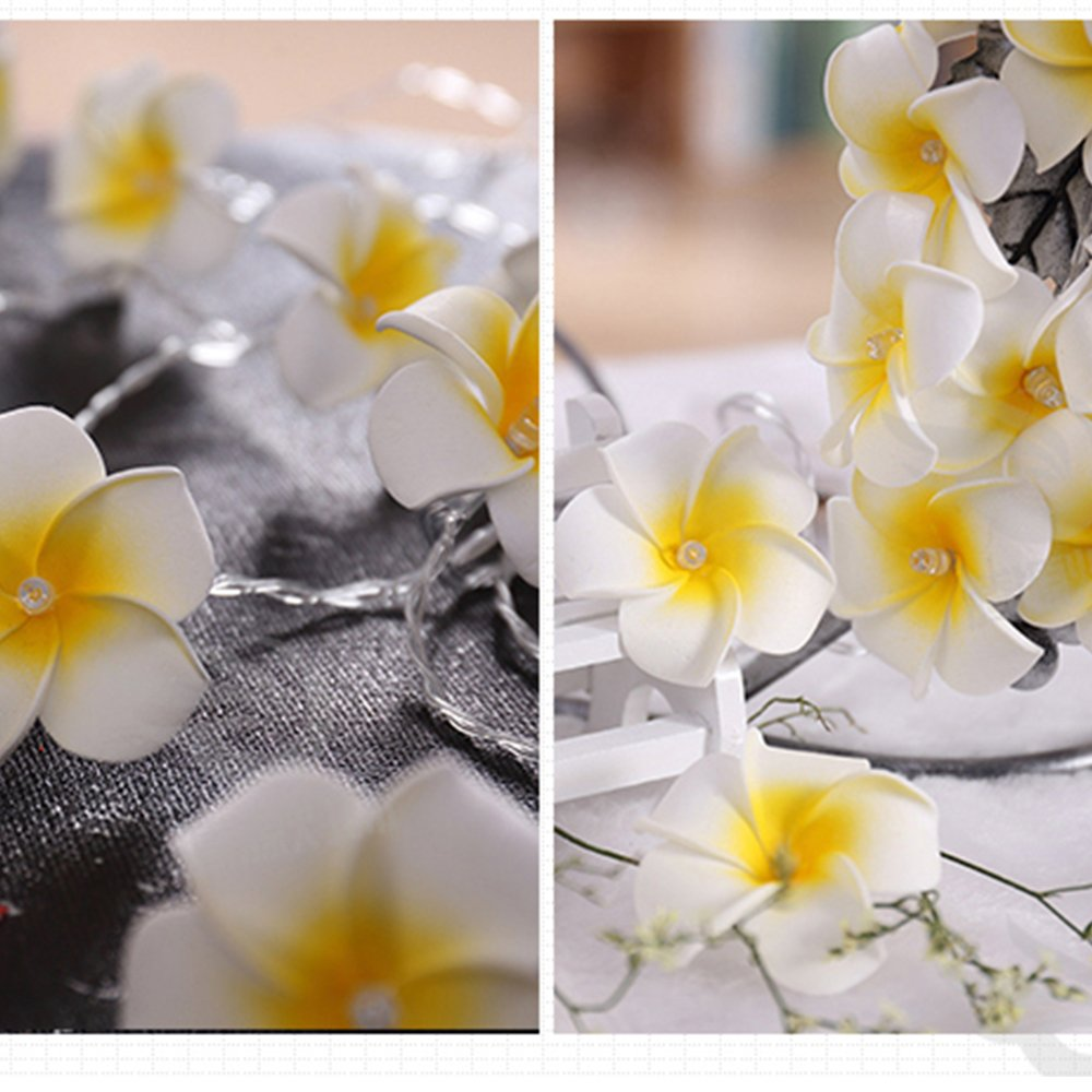 Warm White 2 Sets 20-LED Hawaiian Plumeria Flower String Light ANZOME Artificial Foam Battery Powered Decoration Lights for Wedding Beach Party