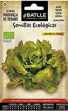 Semillas Ecológicas Hortícolas - Lechuga Maravilla de Verano - ECO - Batlle