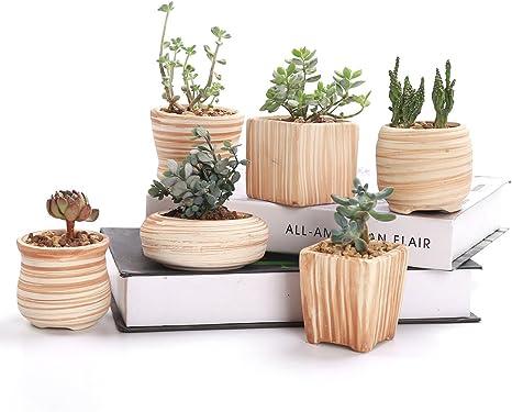 Amazon Com Sun E 3 Inch Ceramic Wooden Pattern Succulent Plant Pot Cactus Plant Pot Flower Pot Container Planter Gift Idea 6 In Set Kitchen Dining
