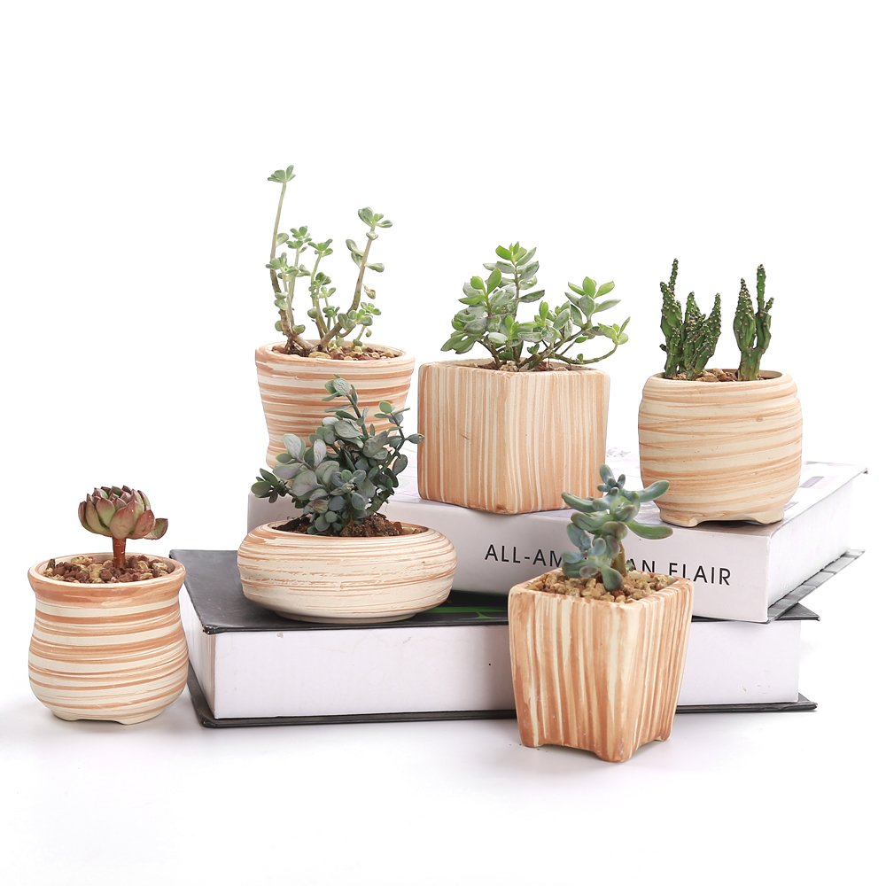 SUN-E 6 In Set 3 Inch Ceramic Wooden Pattern Succulent Plant Pot Cactus Plant Pot Flower Pot Container Planter Idea by SUN-E