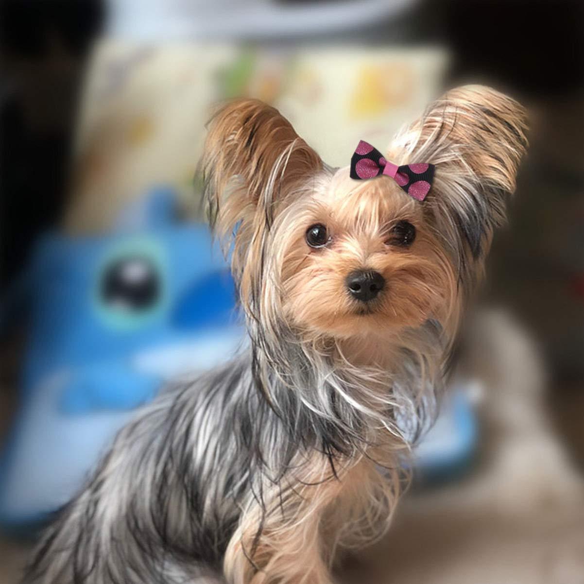 Balacoo Mini Fiocchi per Capelli Elastici Perline per Gatto Piccolo Cane Bambina 40pcs