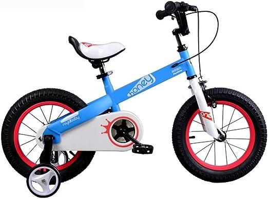 LXF Bicicletas Infantiles Bicicleta Infantil Bicicleta de Estudiante Princesa Bicicleta Infantil 12/14 Bicicleta niños Bicicleta para niños (Color : Blue, Size : A): Amazon.es: Hogar