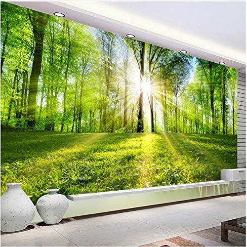 Xbwy 装飾壁画写真の壁紙モダンな3Dステレオの森太陽の光自然風景写真壁の壁画リビングルームテレビソファ背景の壁家の装飾-350X250Cm