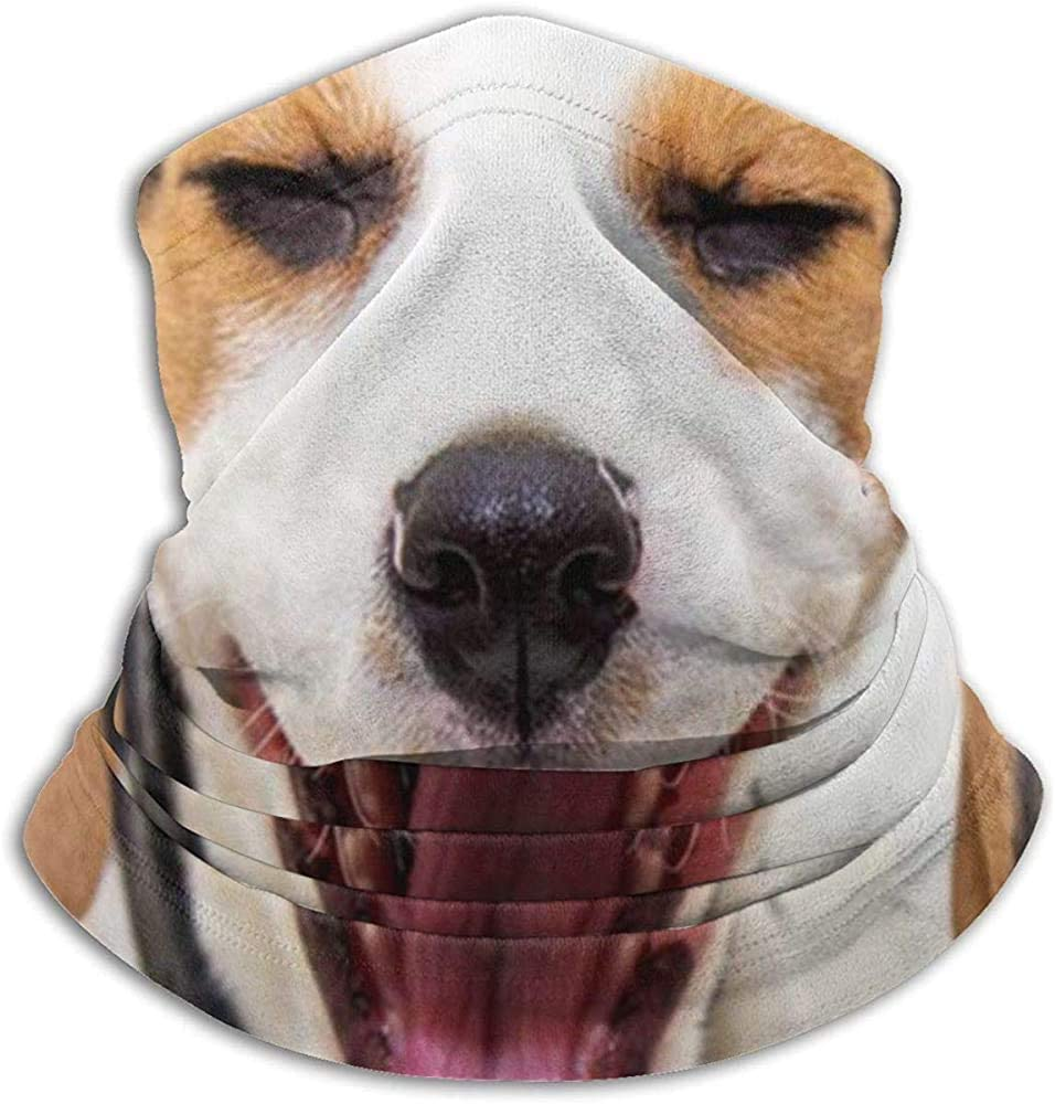 Lovely Beagle Puppy Animals Fauna Silvestre Divertido Unisex Invierno Fleece Neck Warit Polainas Hairband Tubo Para Clima Frío Cubierta De La Cara Bufanda Térmica Cuello Al Aire Libre Cubierta De Fies
