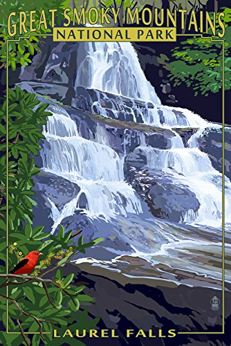 (Great Smoky Mountains National Park, Tennessee - Laurel Falls (12x18 Art Print, Wall Decor Travel)