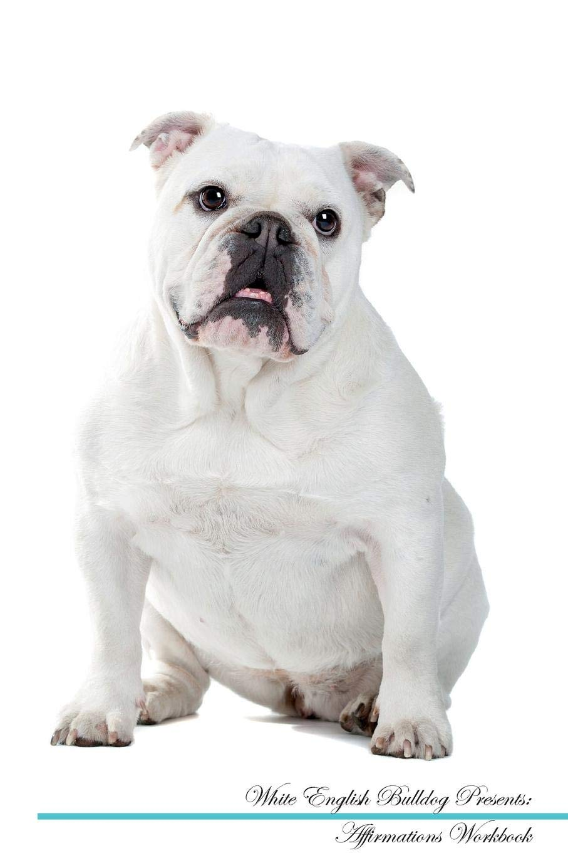 Buy White English Bulldog Affirmations Workbook White