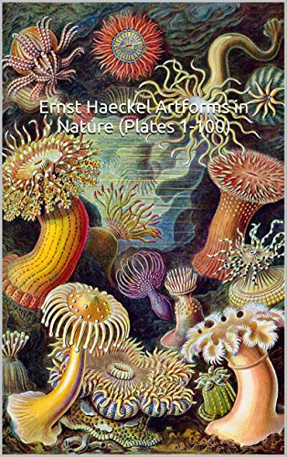 Ernst Haeckel Art Forms in Nature (Plates 1-100): (The World of Art) 100 All Original, Color Plates