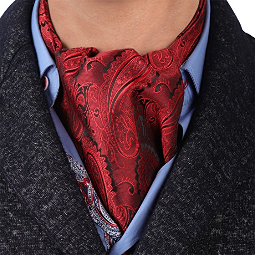 Epoint ERA1B03B Red Paisley Casual Boyfriend Cravat Woven Microfiber Ascot for Mens Thank You Gift]()