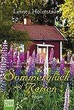 Sommerglück auf Reisen: Roman (Allgemeine Reihe. Bastei Lübbe Taschenbücher)