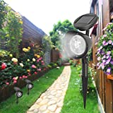 LiPing 3LED Spotlight Outdoor Decorative Lights-Solar Power Light Path Way Wall Landscape Mount Garden Fence Lamp Outdoor (1PC) Review