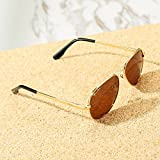 Pro Acme Small Polarized Aviator Sunglasses for