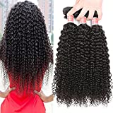 Pizazz Afro Kinky Curly Weave Human Hair 3 Bundles (14 16 18inch) Brazilian Curly Hair Bundles 10A Soft Remy Hair