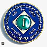 ✅ Premium Quality, Brand New Narcotics Anonymous One Year Clean Time, Standard NA Token Size 34mm x 3mm NA 1 Year Recovery Birthday Anniversary Coin Token Medallion