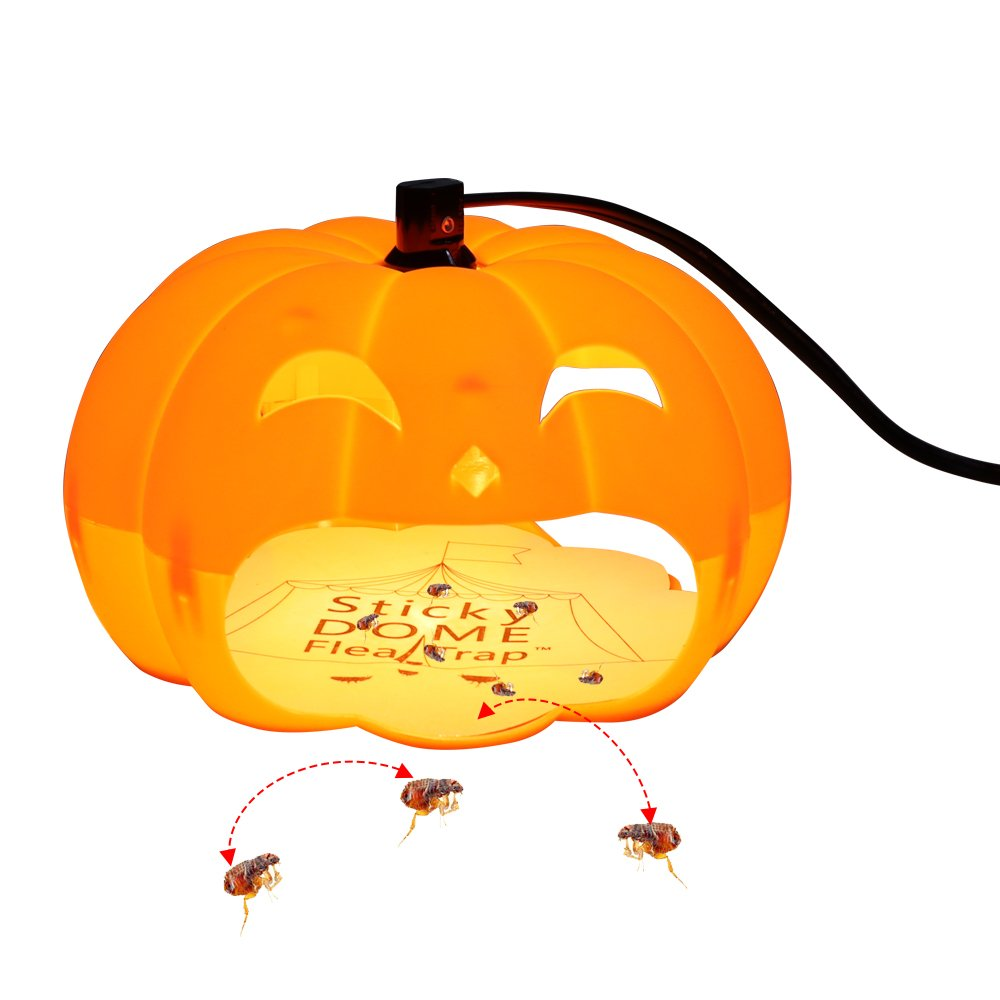 Qingyou Pumpkin Style Flea Trap With 2 Glue Discs and 2 Bulbs,Home Pest Contral. Non-poisonous and Natural Flea Killer, Trapest Sticky Flea Bed Bug Trap. (Orange)