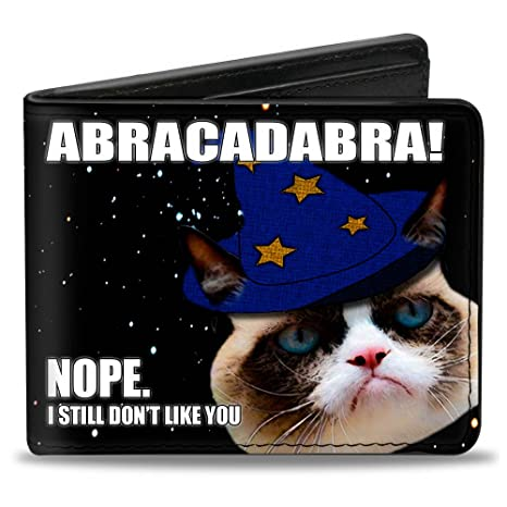 "Gruñón Cat – ""Abracadabra./Nope, I Still Don t like"