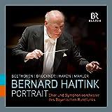 Bernard Haitink Portrait