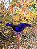 Cobalt Blue Hand Blown Glass Butterfly Feeder with 36'' Copper Stake