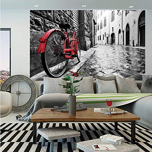 Bicycle Wall Mural,Classic Bike on Cobblestone Street in