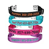 Custom Embroidered Reflective Safety Tough Nylon Dog Collar,Personalized Name ID Collar with Stainless Steel Metal Buckle