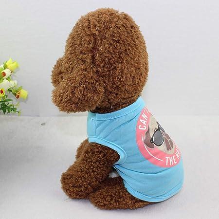 Decdeal Camisa para Perros Camisetas para Mascotas Ropa de Verano Impreso Azul Modelado Chaleco para Gatos Perritos en Fiestas Vacaciones Hawai: Amazon.es: Hogar