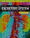 img - for Excretory System (Amazing Human Body) book / textbook / text book