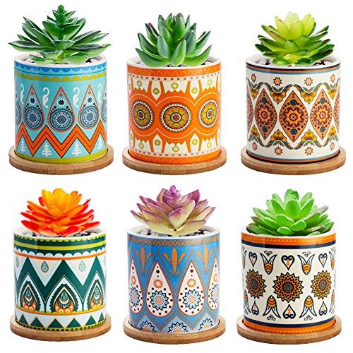Succulent Plant Pots - 3.5 inch Ceramic Succulent Planter - Small Cylinder Flower Pots for Cactus with Drainage Hole and Bamboo Tray, 6 Pack. (6)