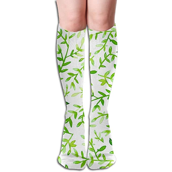 fc0309592 Image Unavailable. Image not available for. Color  Olive Leaves Pattern  Women s Fashion Knee High Socks ...