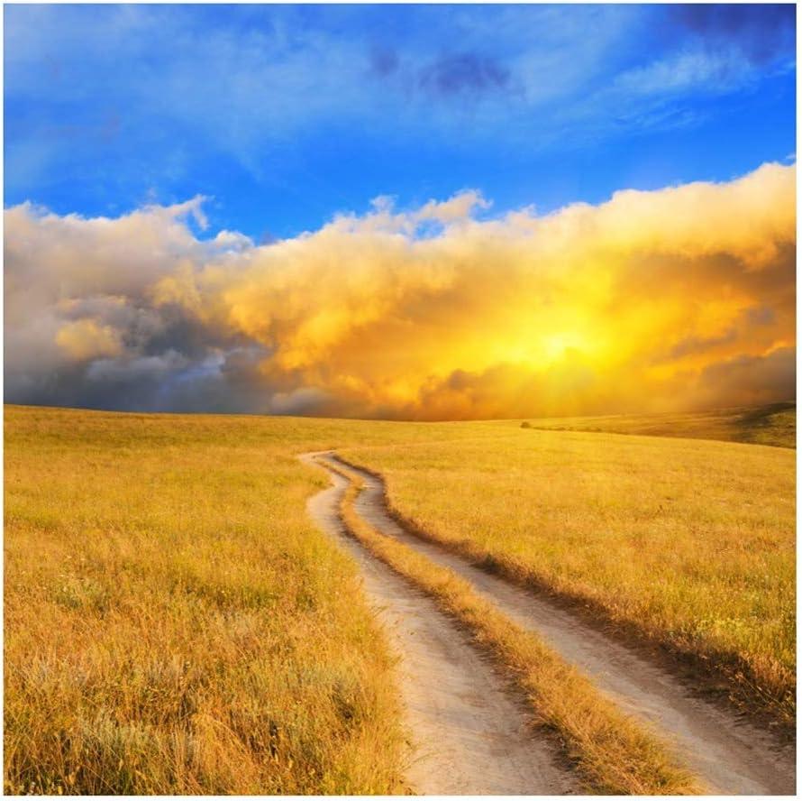 Yeele 9x9ft Haystack Autumn Landscape Photography Background Field Blue Sky Fire Cloud Golden Yellow Dry Grassland Photo Portrait Vinyl Studio Video Shooting Photo Backdrop Wallpaper