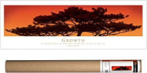 EuroGraphics Inspirational - Growth Poster, 36 x 12 inch