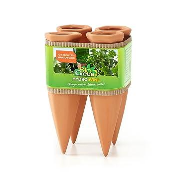 Tonkegel Bewässerung bio green pflanzen bewässerung wine tonkegel terracotta grün für