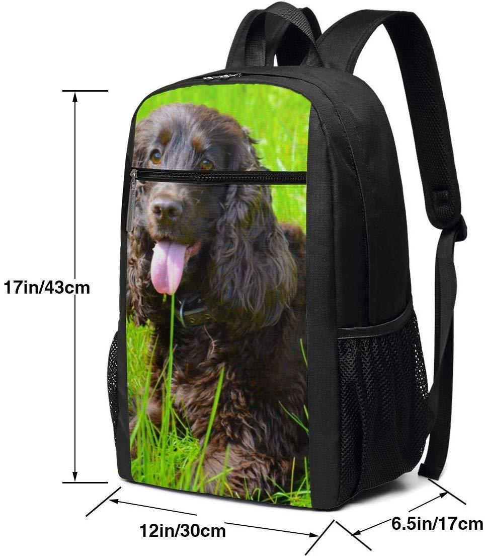 Irish Water Spaniel Multiuses Fation Backpacks School Bookbag Shoulder Bag Casual Daypack Laptop Bag 17 Inch Irish Water Spaniel 2