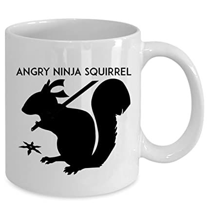 Amazon.com: ANGRY NINJA SQUIRREL - Funny Birthday Secret ...