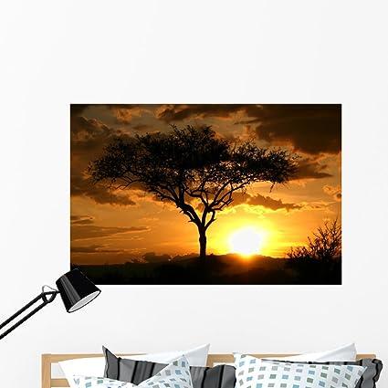 Amazoncom African Sunset Tanzania Africa Wall Mural by Wallmonkeys