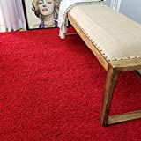 Soft Shag Area Rug 5' x 7' (5 feet by 7 feet) Plain Solid Color RED Shaggy Rug - Living Bedroom Kitchen Modern Shaggy Rugs