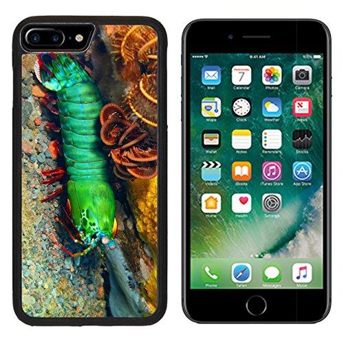 Luxlady Apple iPhone 7 Plus iPhone 8 Plus Aluminum Backplate Bumper Snap iphone7plus/8plus Case IMAGE ID: 34031412 Mantis shrimp Island Bali Tulamben