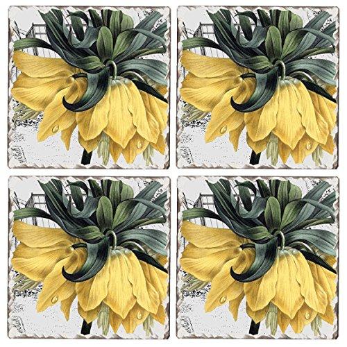 Cala Home Set of 4 Tumbled Tile Coasters, New York Botanical Garden Conservatory